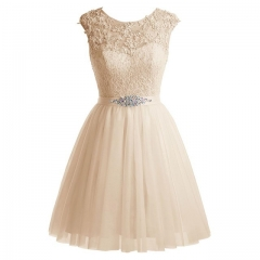 Summer Sleeveless Back Zipper Short Champagne Lace Cocktail Prom Dress
