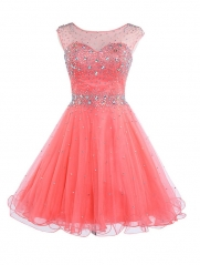 Rose Red / Blue / Pink / Claret / Purple / Red Crystal Short Party Prom Dress